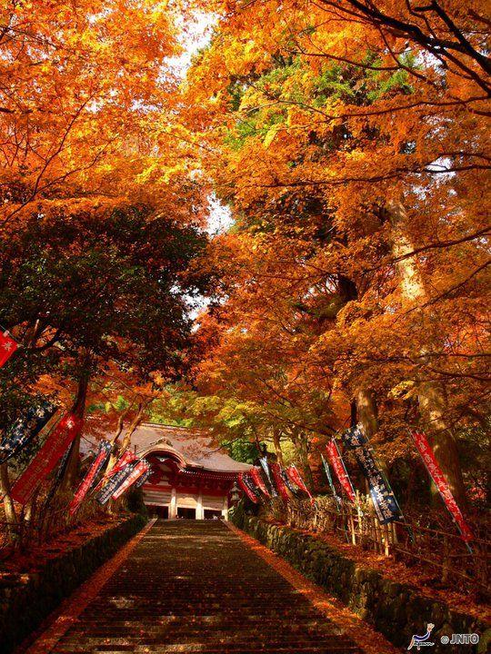 Shimane Japan  city photos gallery : Gakuenji Temple, Shimane, Japan | Passageways | Pinterest
