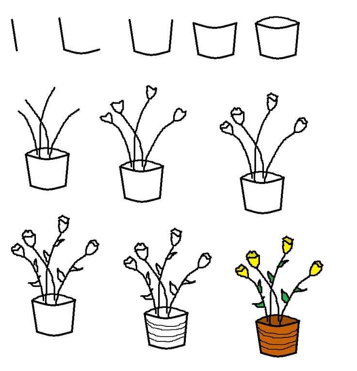 How to draw a pot of flowers | Recipes | Pinterest