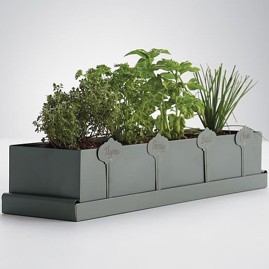 Kitchen Herb Planter Spaces Kitchens Pinterest