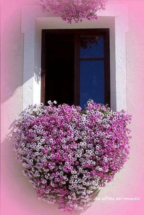 rózsaszínű ház, virágokkal