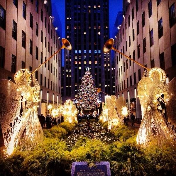 New York City Christmas Trees
