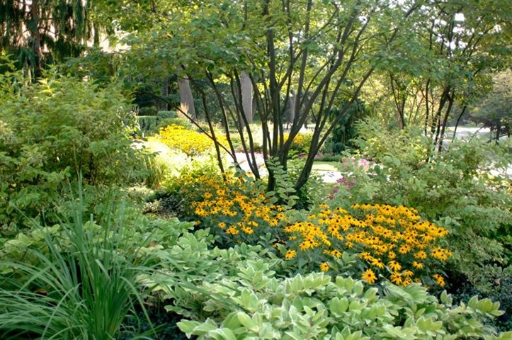 landscaping ideas for zero landscaping