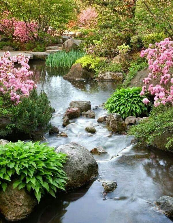 Anderson Japanese Garden Spring Board Pinterest