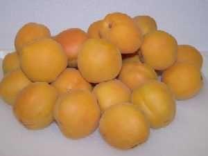How to Make Apricot, Peach, Plum or Nectarine Jam - Easily! | Recipes ...