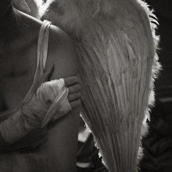 battered angel