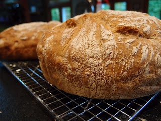 Whole wheat no Knead Bread | i Eat | Pinterest