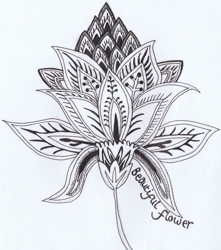 how to draw : beautiful flower