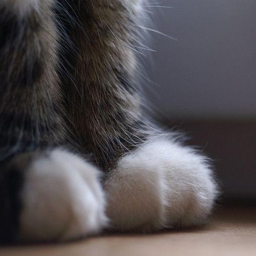Little feet!