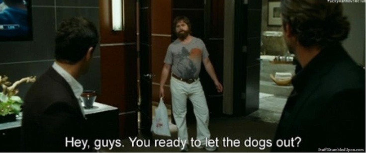 Hangover Movie Meme Funny : The hangover movie meme let dogs out tru calling thumb