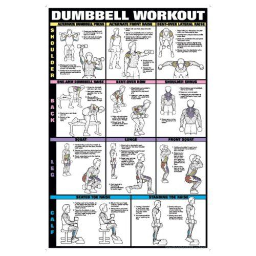 free printable dumbbell workout chart car pictures Car Tuning