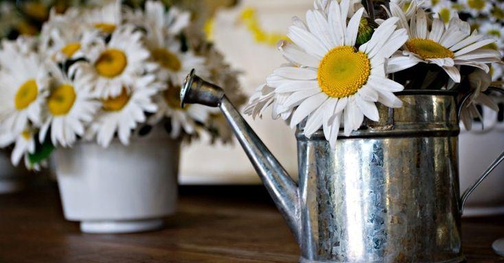 Veja como deixar a decoração do casamento com ares de primavera - Casamento - UOL Mulher