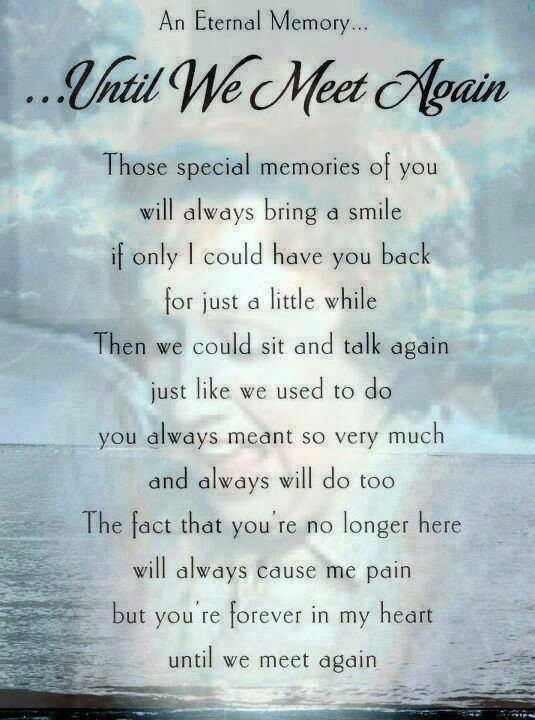 Until we meet againUntil We Meet Again Poems