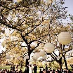 Wedding ceremonies under big, beautiful trees are so romantic!