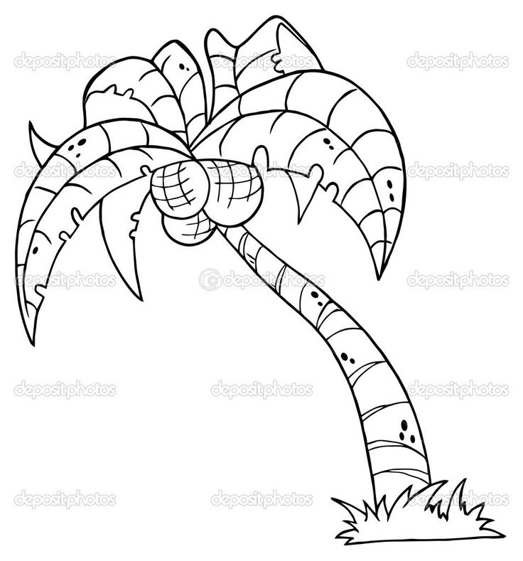 Pin by elena campbell barnaby on templates pinterest for Printable coconut tree template