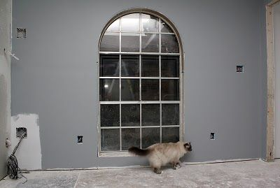 Sw uncertain gray home decorating pinterest Sherwin williams uncertain gray