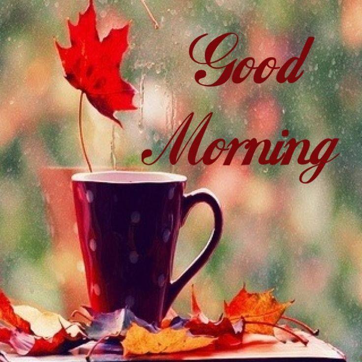 Good morning - I wish you a happy Friday | Happy Morning ...
