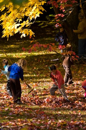 Kids raking leaves in the autumn.