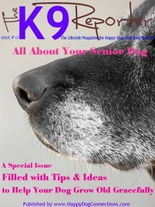 This issue is all about your senior dog. We'll talk wellness and training with professional experts. Here are some of the highlights: Keeping your senior dog physically and mentally fit 10 Tips for helping your dog coping with the pain of arthritis Dental care for your senior dog 10 tips to make life easier for your dog How obesity affects your dog's health When your dog goes blind or deaf and other disabilities