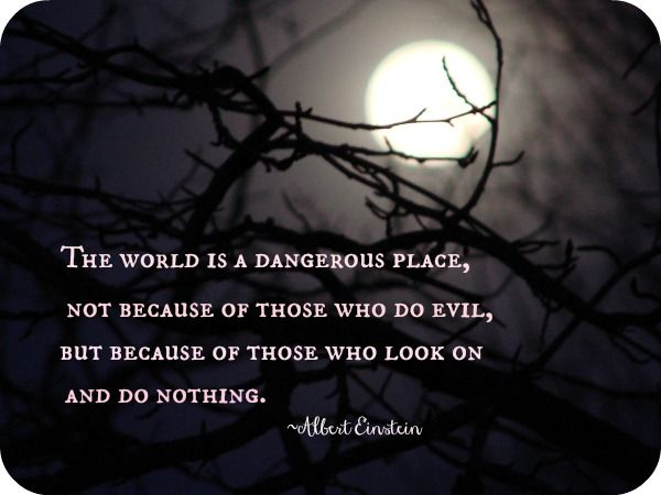 The world is a dangerous place, not because of those who do evil, but because of those who look on and do nothing. ~Albert Einstein