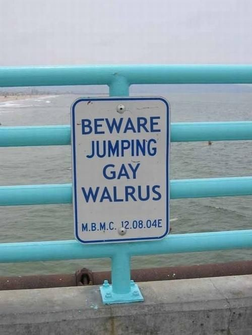 Funny Beware Jumping Gay funny image picture