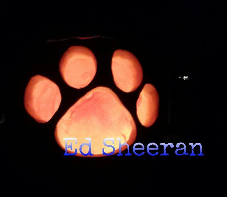 Ed Sheeran Paw Print | Ed Sheeran