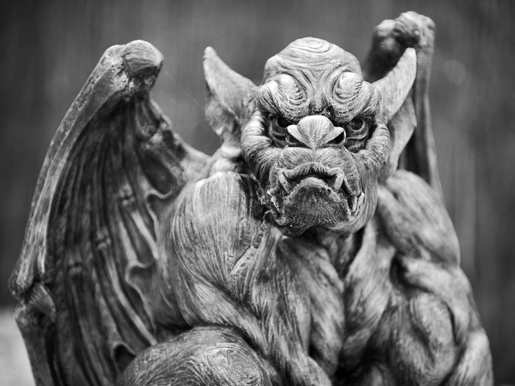 flumpo on Deviant Art took this picture.  Who doesn't love Gargoyles?  =)