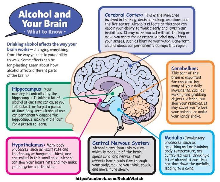 drug brain damage recovery