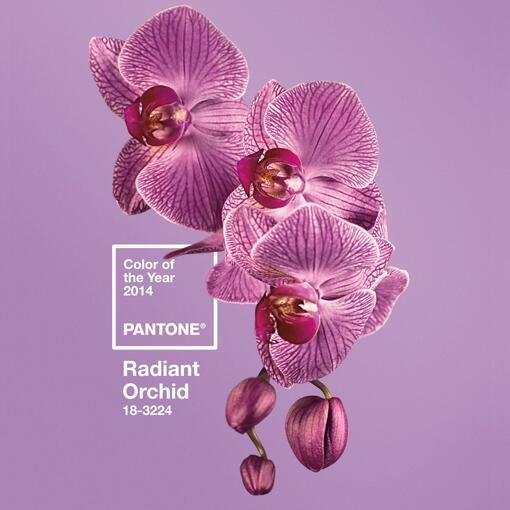 http://www.pantone-france.com/pages/pantone/index.aspx