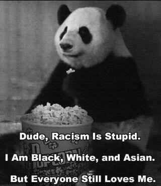 Racism isn't good... Everybody is equal!