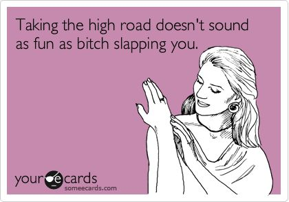 Taking the high road doesn't sound as fun as bitch slapping you.