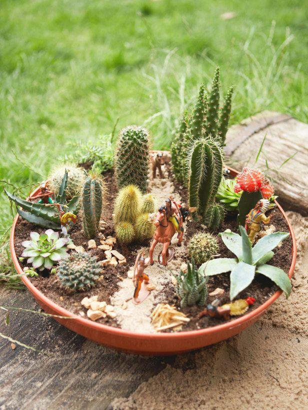 Wild Wild West in a Cactus Dish Garden Green fingers