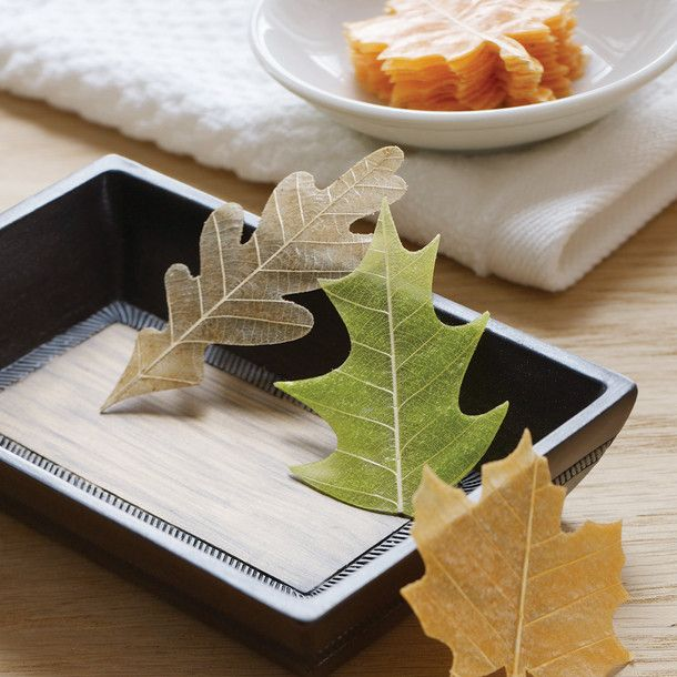 Soap Leaves by Design Ideas