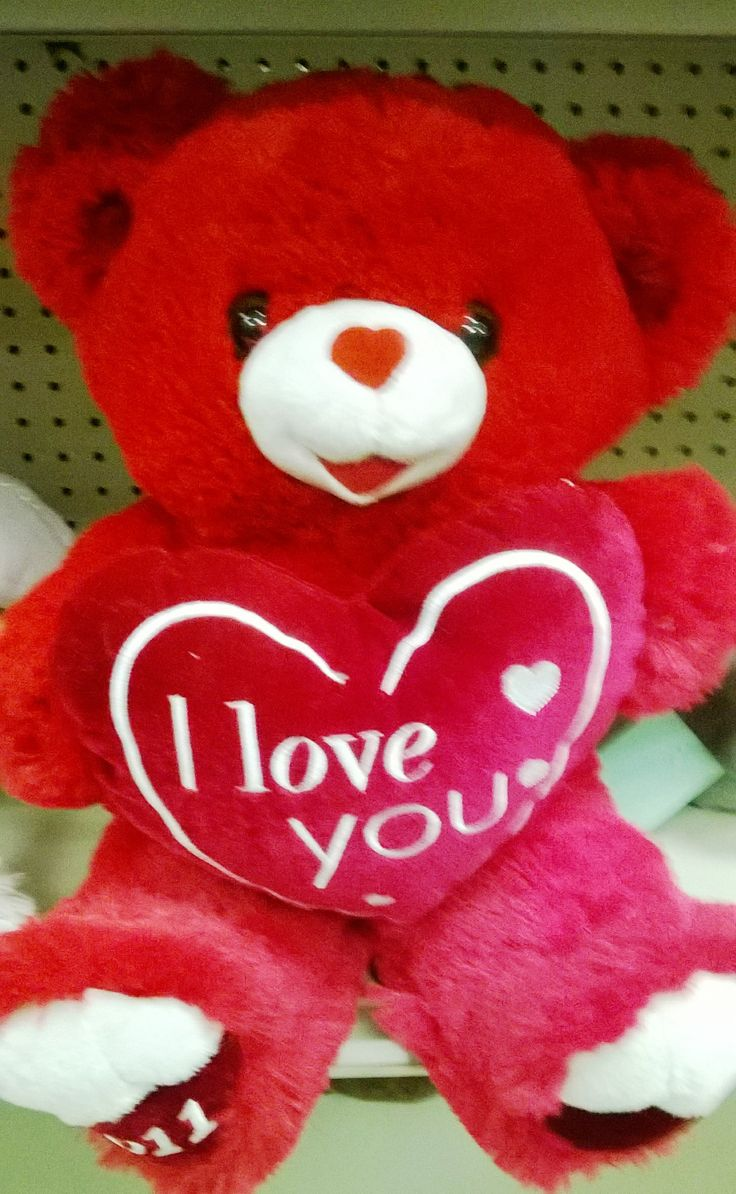 valentines day teddy bear pictures