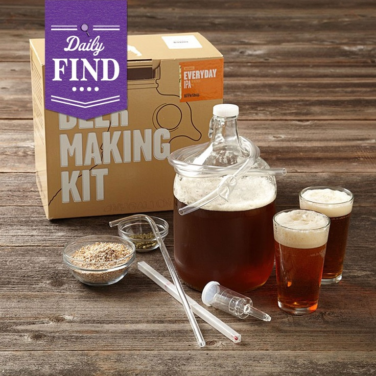 by Brooklyn Brewery  Everyday IPA Home Brewing Kit - Daily Find