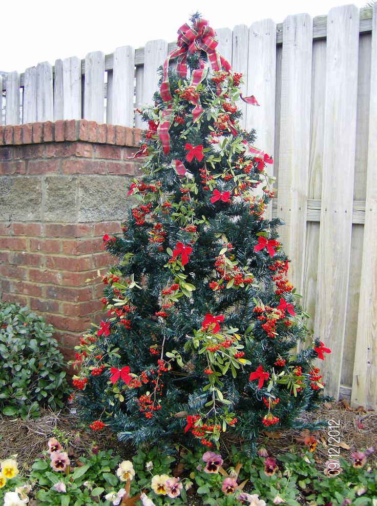 Decorated Outdoor Christmas Tree All About Christmas