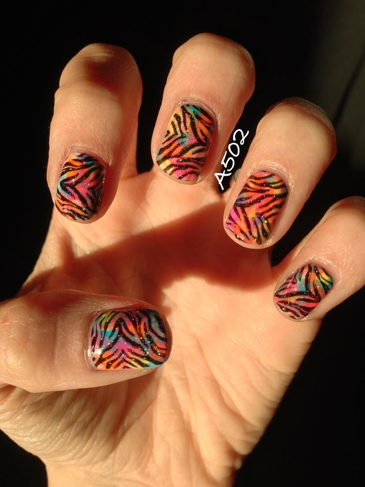 About Zebras Sha excelsiororg