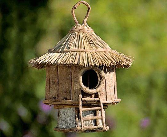 Diy birdhouse idea bird houses pinterest for Diy bird house