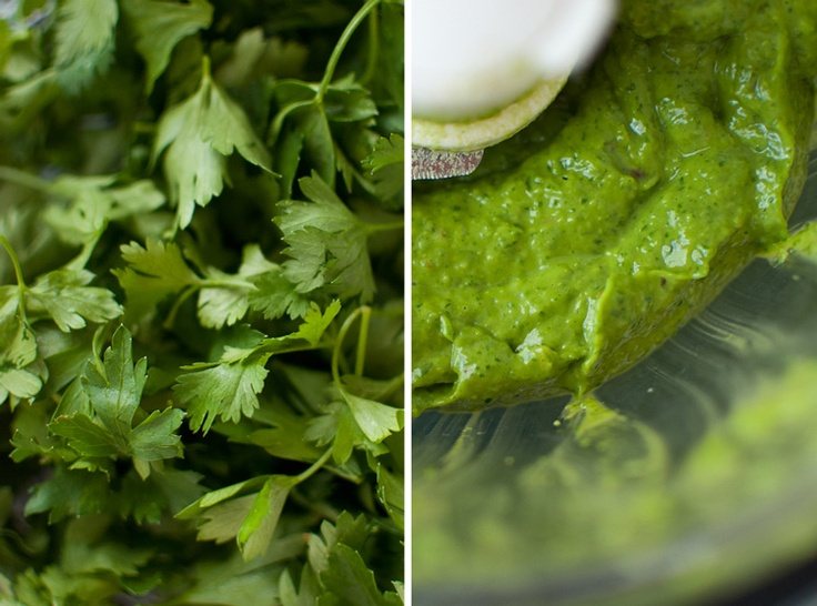 Summer Squash Tacos with Avocado Chimichurri Sauce | Recipe
