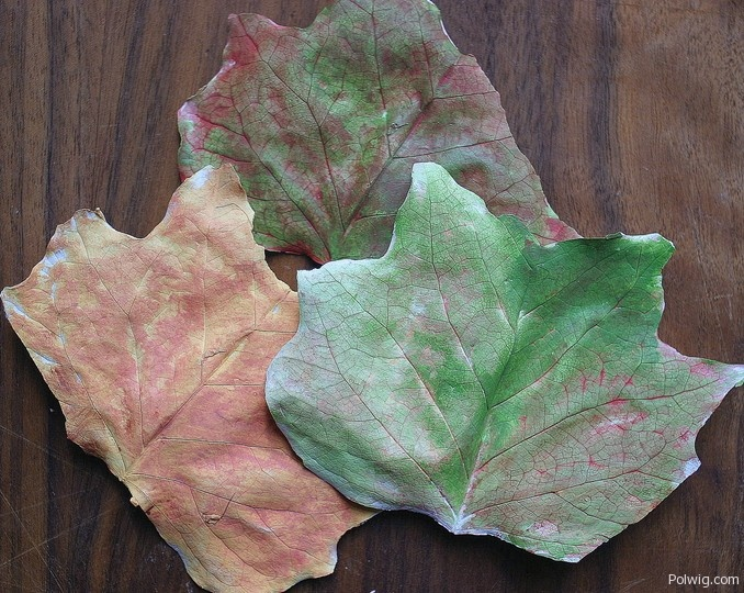 Fall leaves craft autumn craft ideas for kids pinterest for Leaf crafts for adults
