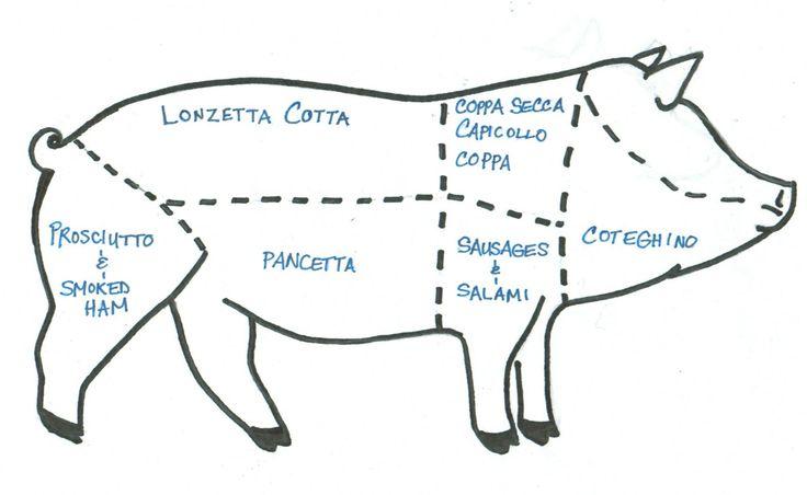 pig diagram of italian meats