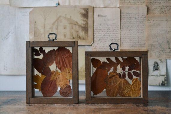 Vintage Pressed Fall Leaves Autumn Decor by KindlingVintage, $36.00 #Eveteam #FinestVintage