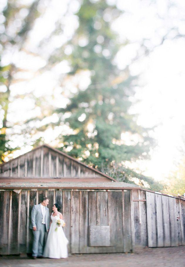 vine inspired wedding boston