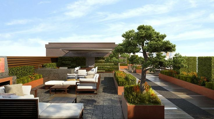 Roof terrace roof gardens terraces pinterest for Terrace rooftop