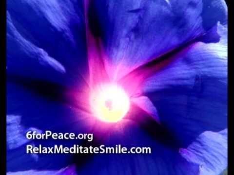 Beginner meditation youtube francais