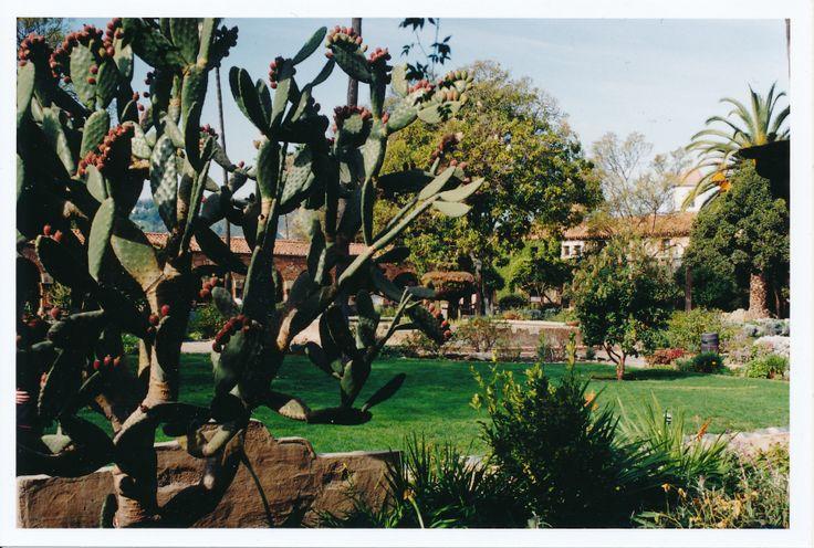 San Juan Capistrano Mission Gardens   Gardens, Forests, Landscapes ...