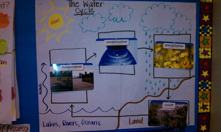 Fifth Grade Water Cycle Science | Free Collection Of Pictures Of The ...