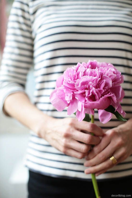 Stripes & peonies--two of my faves