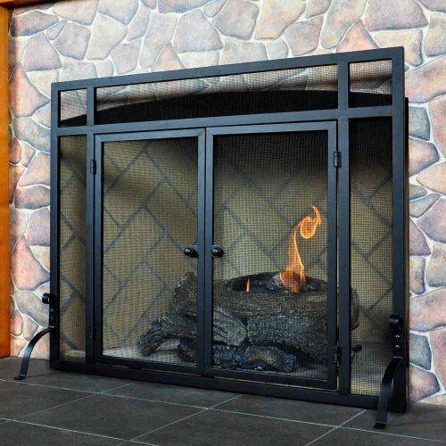 Flush Doorway Fireplace Screen Home Pinterest