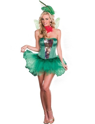 Hummingbird Hottie Costume
