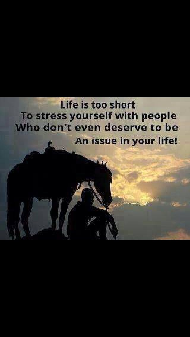 Horse people quotes quotesgram